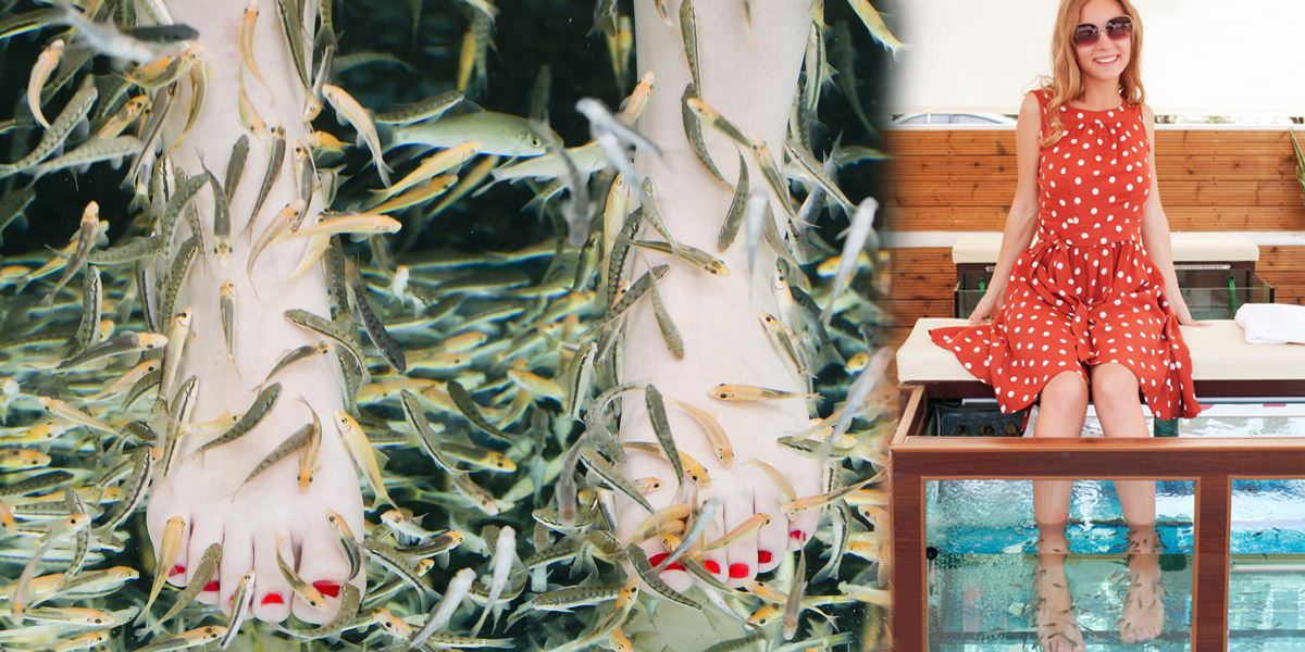 Lupénka je onemocnění, které nelze skrýt a které svému nositeli ztrpčuje život. Při léčbě této nemoci umí pomoci rybky Garra Ruffa.