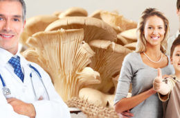 Češi patří mezi národ proslulý houbařskou vášní. Víte ale, že si na houbách můžete nejen pochutnat ve formě smaženice, ale také s nimi udělat něco pro své zdraví?