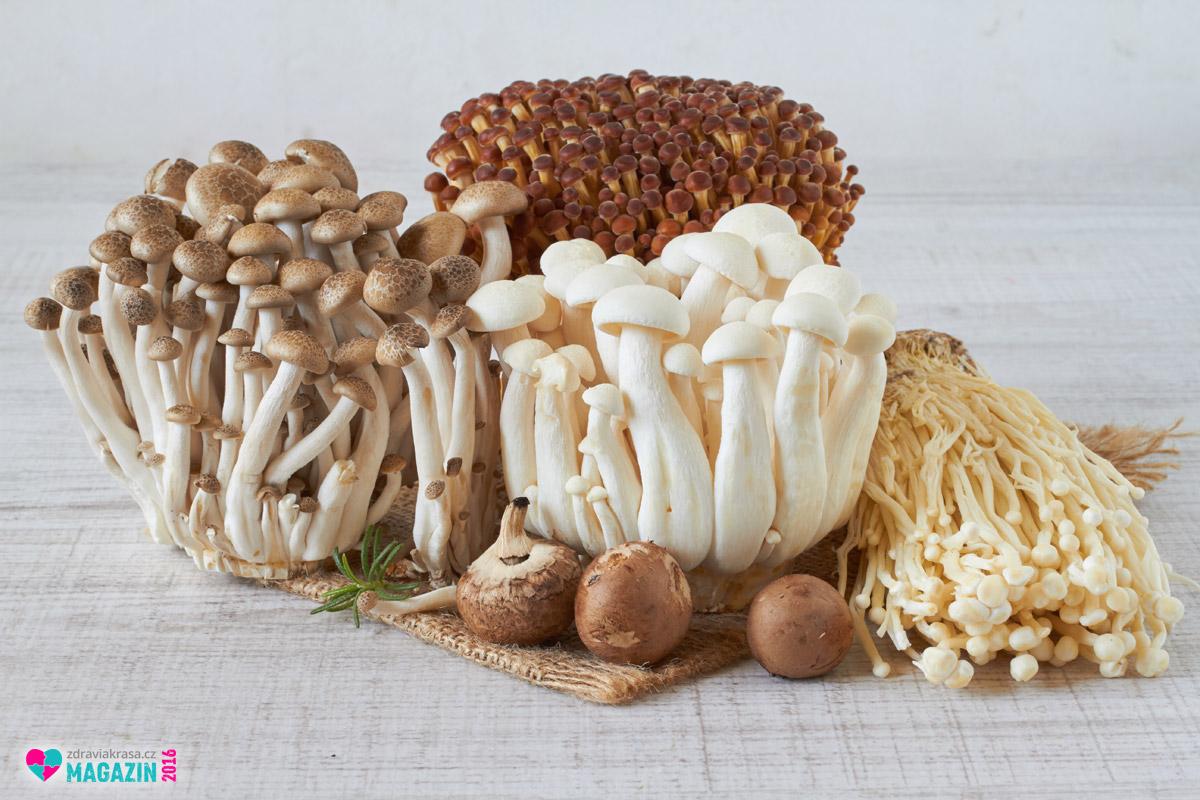 Do západní medicíny pronikly medicinální houby alespoň jako doplňky stravy.