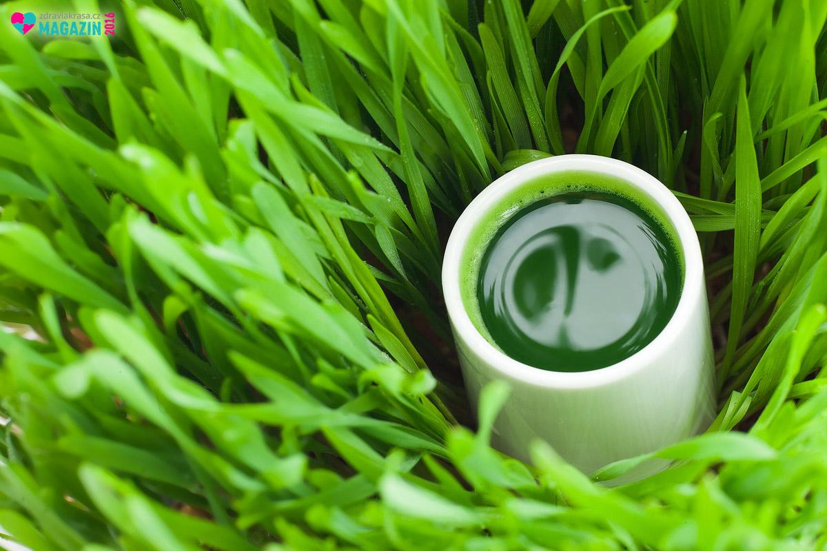 Důležitou a zdraví prospěšnou součástí mladé pšenice je chlorofyl. Ten je mimo jiné považován za přírodní antibiotikum a má protizánětlivé účinky.