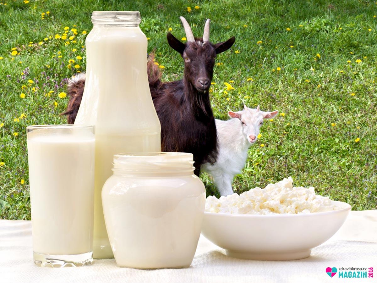 Kdo netrpí laktózovou intolerancí, měl by určitě do svého jídelníčku zařadit kozí mléko a k němu přidat další výrobky z kozího mléka.