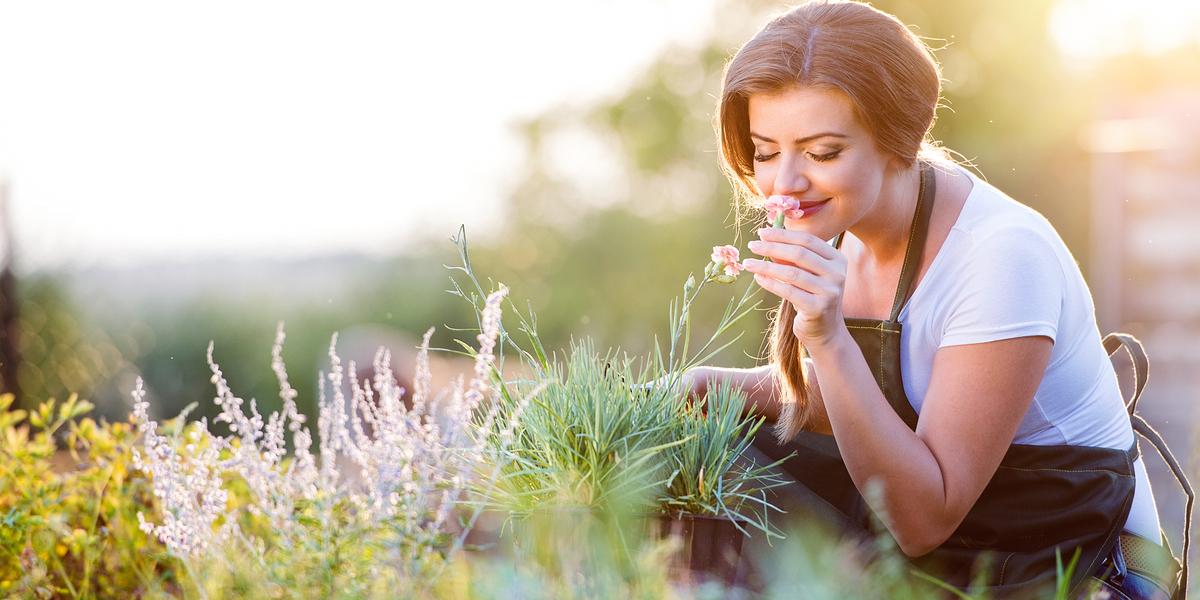S podzimem bylinek ubývá. Přesto na nás léčivé rostliny v říjnu stále ještě čekají. Nasbírat lze mnoho těch, které nám pomohou udržet se v kondici.