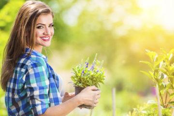 Léčivé rostliny v září nám pomohou vyrovnat se se změnou počasí, a díky nim můžeme předcházet případným nemocem, a posilnit tak náš organismus.