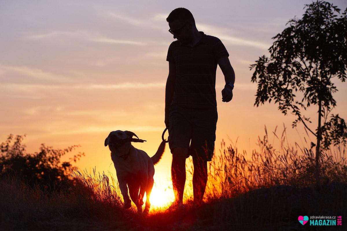 Zdravá chůze se dá spojit i s dalšími aktivitami. Třeba s každodenním venčením nebo s denní cestou do práce. Pro chůzi si najdete prostor snadněji než pro jiný sport.