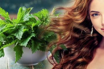 Kopřiva a vlasy? Účinky kopřivy na detoxikaci našeho organismu jsou známé, méně známé jsou její účinky na kvalitu našich vlasů. Stojí za to je znát!