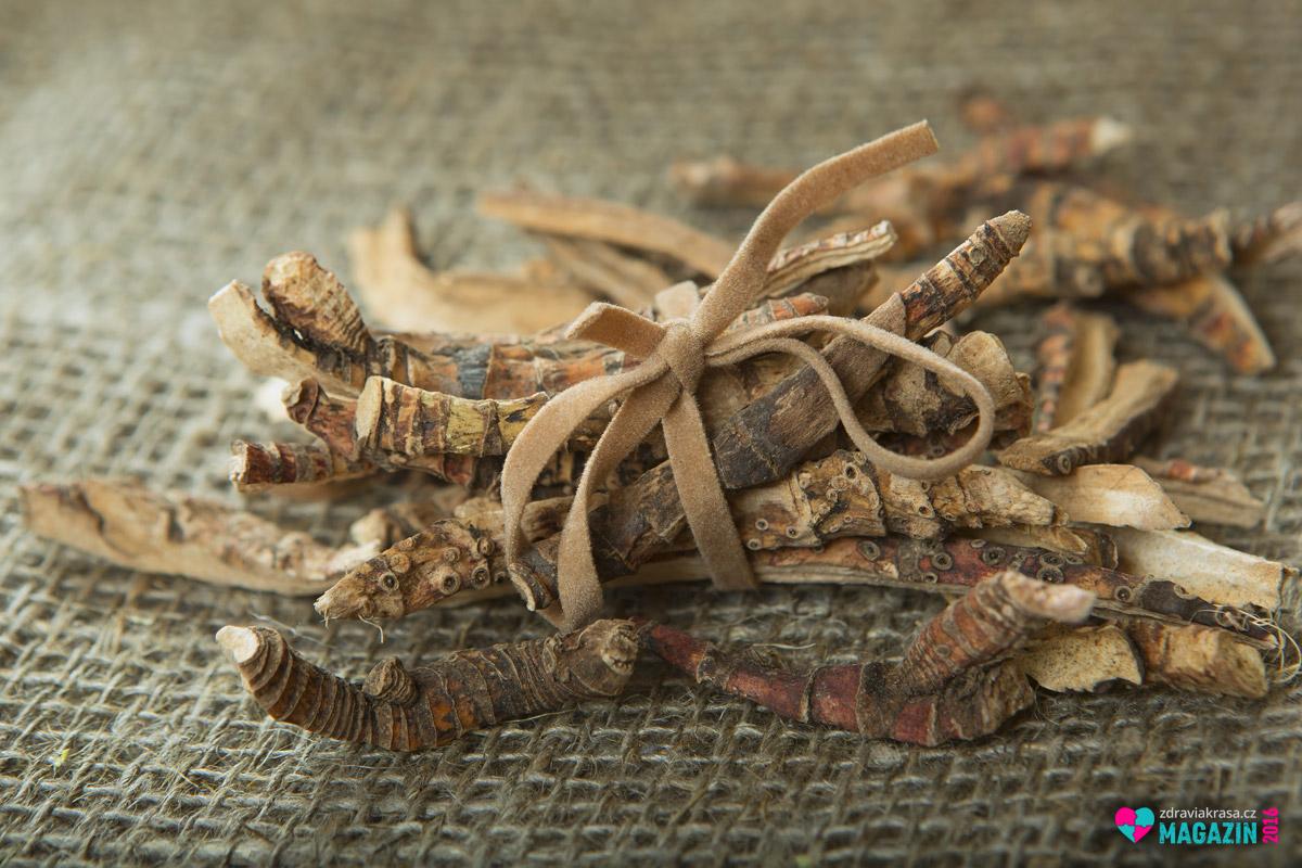 Puškvorec podporuje chuť k jídlu a podněcuje tvorbu žaludeční kyseliny.