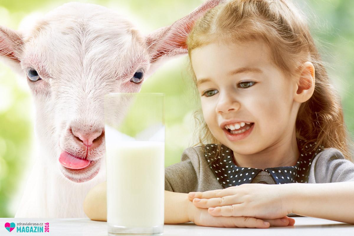 Kozí mléko jako lék není jen tradičním lidovým léčitelským prostředkem.