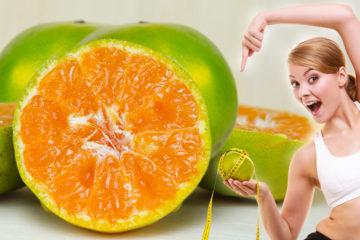 Po staletí se citrus aurantium uplatňoval v přírodní medicíně. Moderní svět ovšem divoký pomeranč objevil pro boj s obezitou.