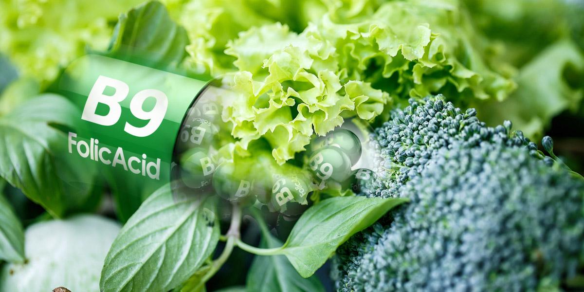 Foláty jsou pro většinu lidí naprosto neznámým pojmem. Ve skutečnosti jde o sloučeniny kyseliny listové, která patří do skupiny vitamínů B.