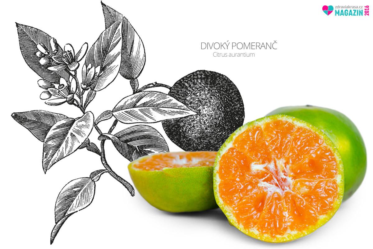 Divoký pomeranč objevila moderní medicína jako skvělý prostředek na hubnutí.