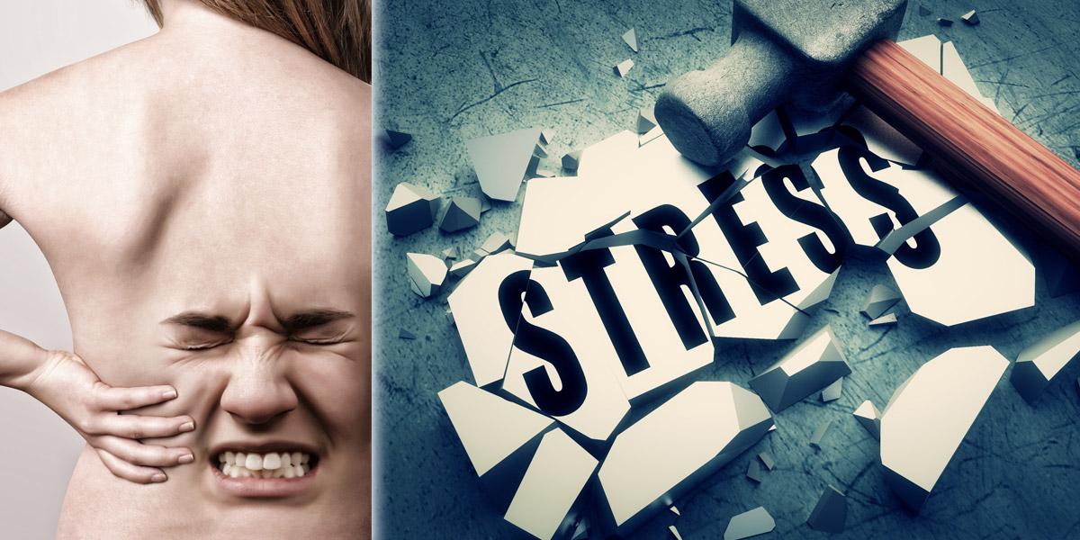 Když vás rozbolí záda, nemusí se jednat o degenerativní onemocnění páteře nebo o následky po úraze. Stres a bolest zad mají souvislost.
