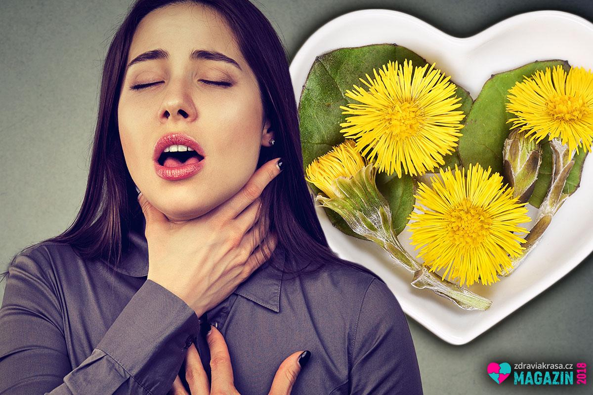 Dovolte podbělu, aby vám pomohl při zahlenění, zánětech dýchacích cest, astma, bronchitidě, chronickém zánětu průdušek, chrapotu, kataru hrtanu, při tuberkulóze, chronickém kašli i při plicních problémech.