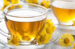 Jak připravit podbělový čaj? Čaj z podbělu se hodí nejen proti kašli, ale i k léčbě různých dalších neduhů. Podívejte se, jak jej připravit čistý, nebo do jakých bylinných směsí se hodí.