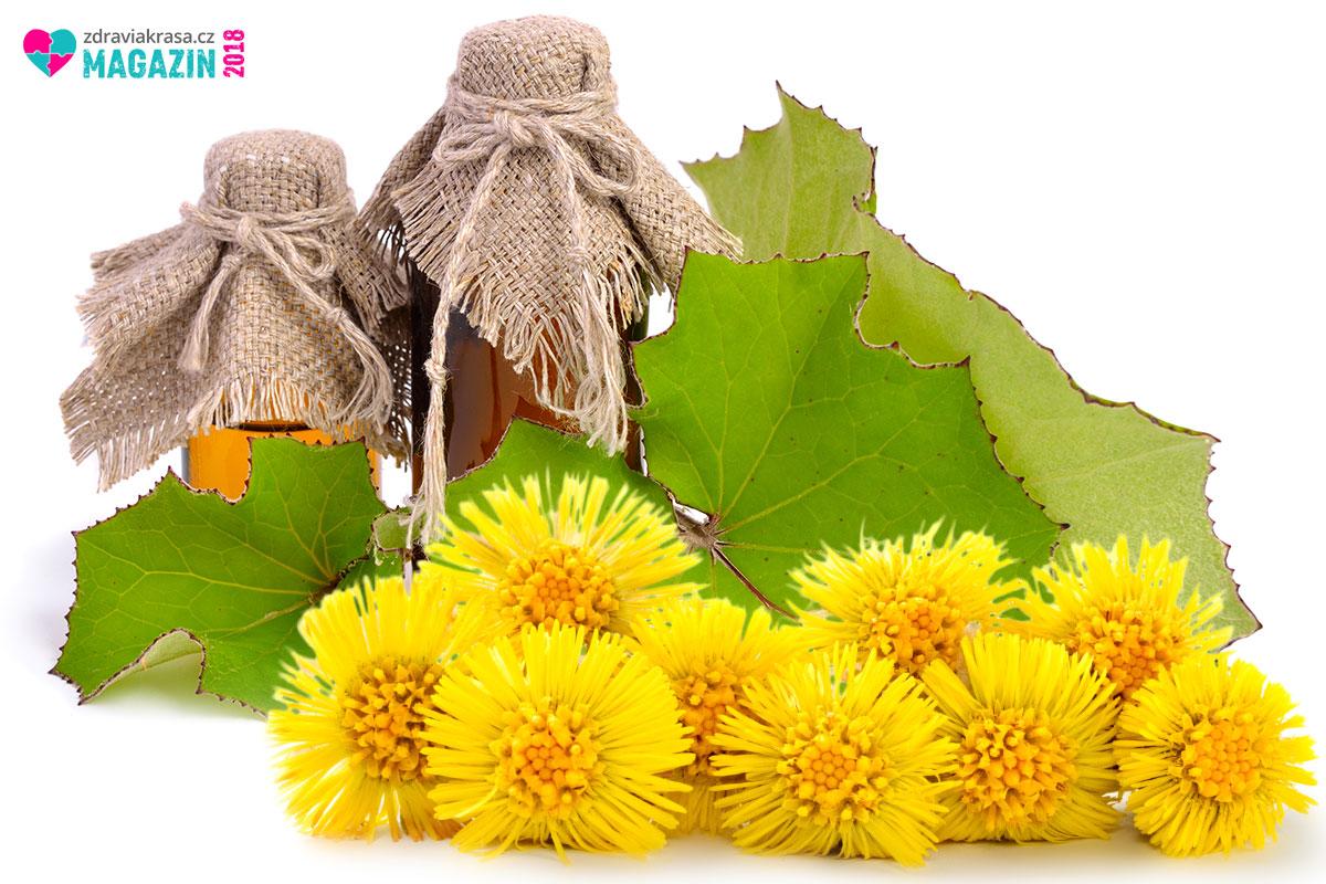 Podbělový sirup se vyrábí z listů podběle nebo se směsi podbělových květů a listů.