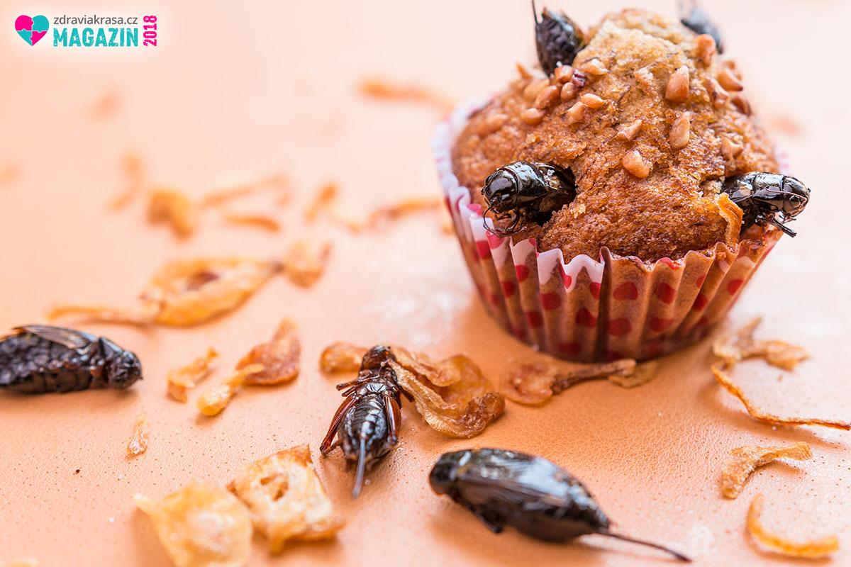 Ne, tento cupcakes nenapadl nenažraný hmyz! Jde jenom o vizi našeho nového jídelníčku. Jedlý hmyz je bohatým zdrojem živin pro lidský organismus a nejspíš i způsobem, jak vyhrát boj s hladem na planetě.