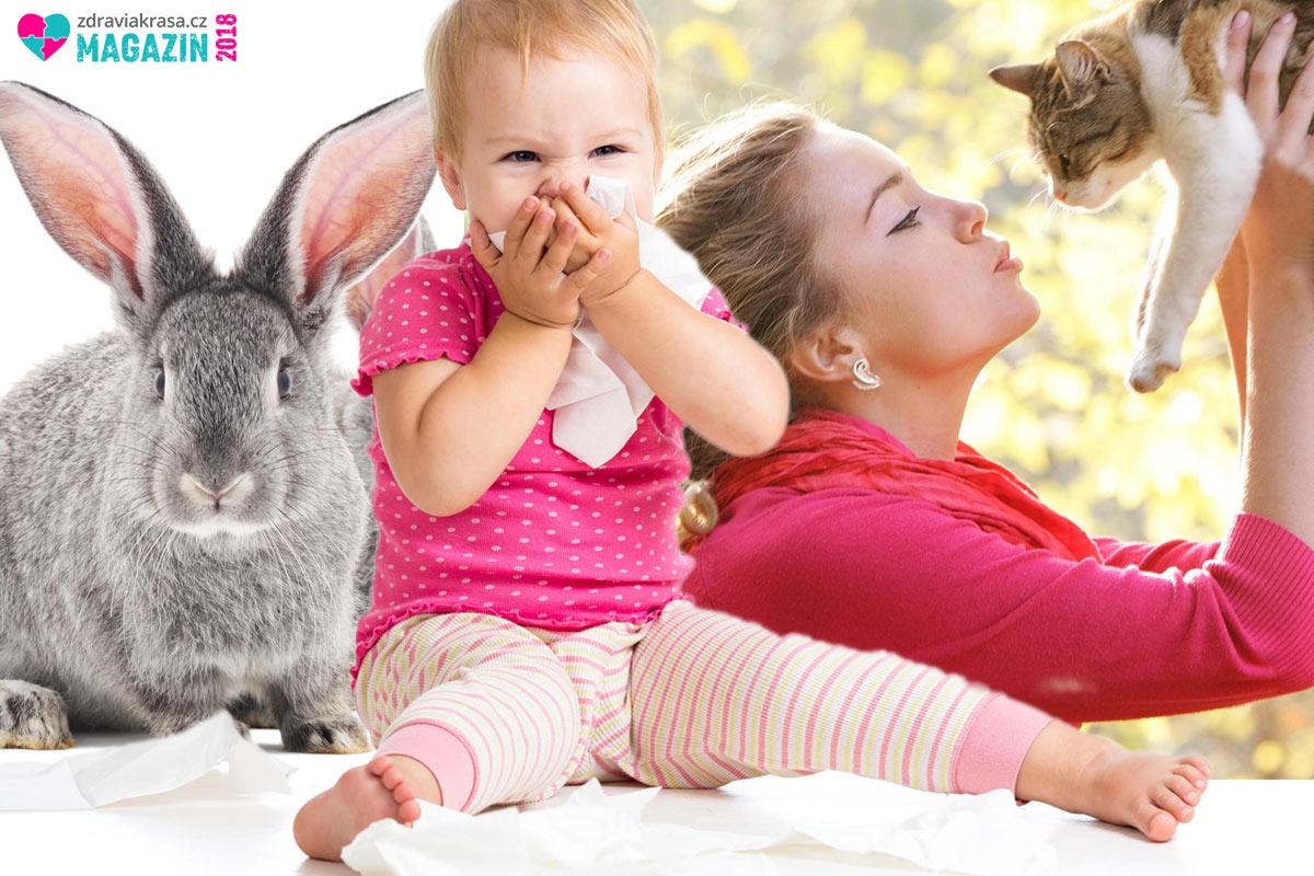 Domácí zvířata jsou častou příčinou alergie.