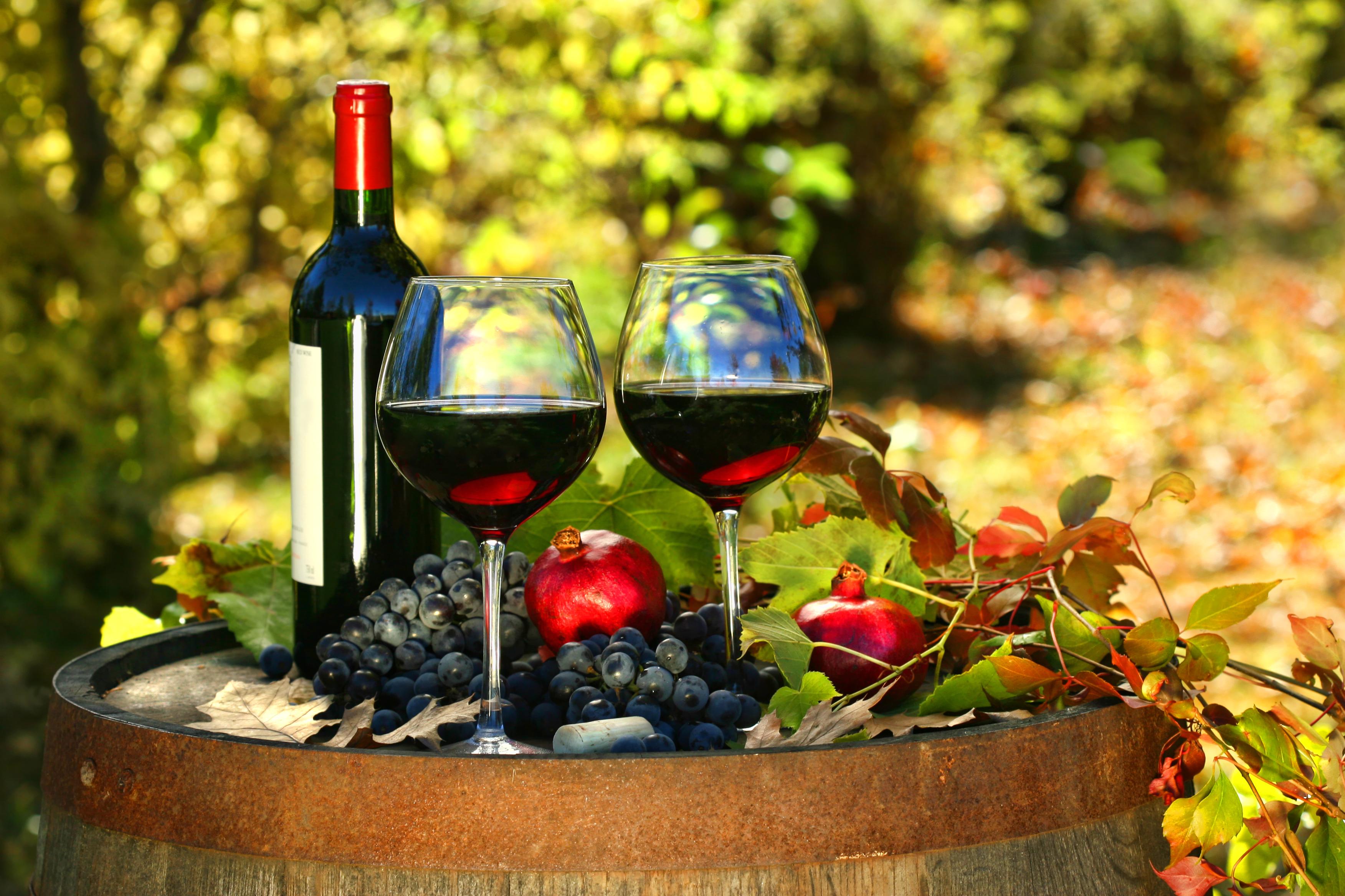 Červené víno a zdraví: je skutečně červené víno zdravější než bílé? Záleží, na prevenci jakých nemocí se zaměříme.