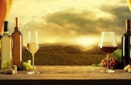 """Říká se: """"In vino veritas"""" –""""Ve víně je pravda"""". Ale nejen to. Ve víně se prý ukrývá i zdraví. Jaká je ale reálná pravda o víně? Jde víno a zdraví dohromady? Je víno skutečně elixírem zdraví, jak se o něm říká?"""