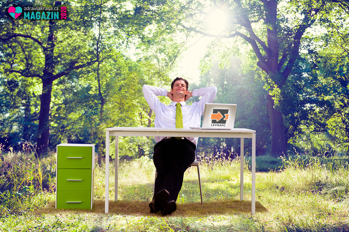 Repasované počítače a notebooky přispívají ekologii i trvale udržitelnému rozvoji. Současně šetří naše peněženky.